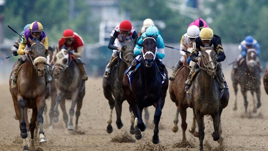 Gulfstream park horse racing odds betting nfl argenteo mining bitcoins