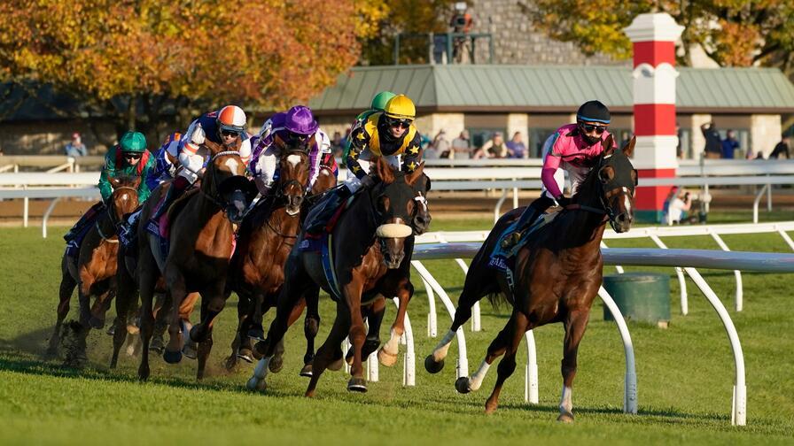 fantasy horse racing betting terms