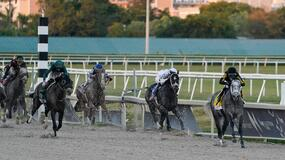 Keeneland Horse Racing Picks for Friday 4/16/21