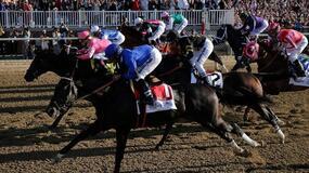 Santa Anita Park Horse Racing Picks for Friday 6/11/21
