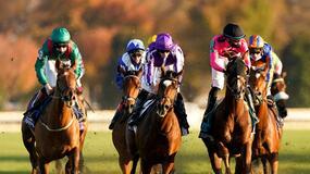 Santa Anita Park Horse Racing Picks for Saturday 6/12/21
