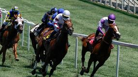 Santa Anita Park Horse Racing Picks for Friday 6/18/21