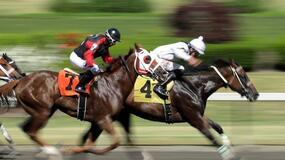 Belmont Horse Racing Picks for Thursday 6/24/21