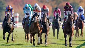 Del Mar Horse Racing Picks for Saturday 7/24/21