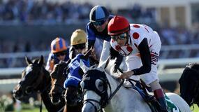 Del Mar Horse Racing Picks for Thursday 7/29/21
