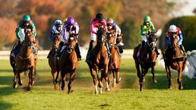 Del Mar Horse Racing Picks for Sunday 8/29/21