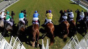 Belmont Horse Racing Picks for Sunday 9/19/21